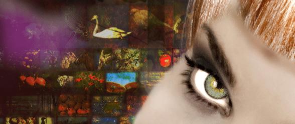 Top 10 Digital Art Time Wasters